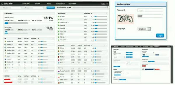 a screenshot from a botnet toolkit